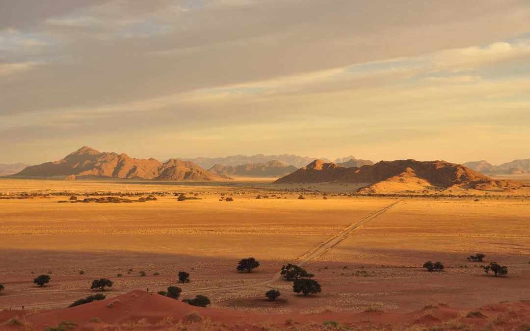 South Africa's Deserts: Diverse and Beautiful